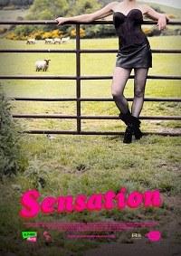 Sensation (2010)