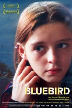 Bluebird (2004)