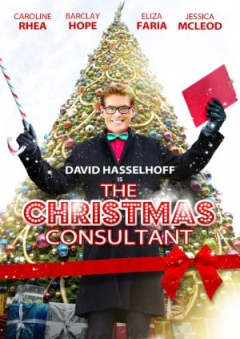 The Christmas Consultant (2012)