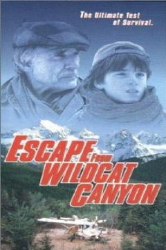 Escape from Wildcat Canyon (1998)