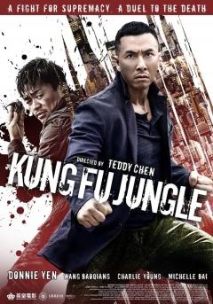 Kung Fu Jungle (2014)