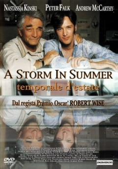 A Storm in Summer (2000)