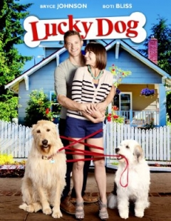 Lucky Dog Trailer