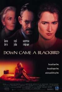 Down Came a Blackbird (1995)