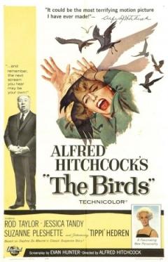The Birds Trailer