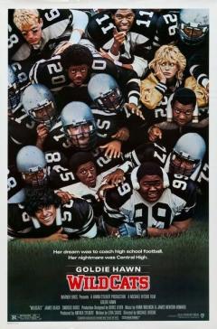 Wildcats (1986)
