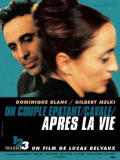 Après la vie (2002)
