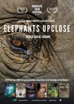 Elephants Up Close (2018)