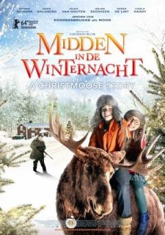 Midden in De Winternacht (2013)