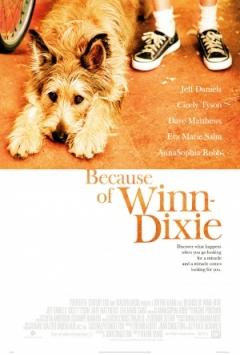 Because of Winn-Dixie Trailer