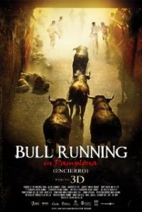 Encierro 3D: Bull Running in Pamplona (2012)