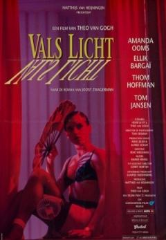 Vals licht (1993)