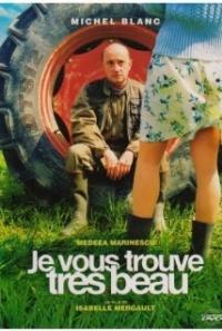 Je vous trouve très beau (2005)