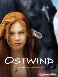 Stormwind (2013)