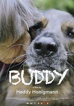 Buddy Trailer