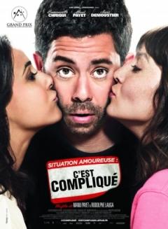 Situation amoureuse: C'est compliqué (2014)