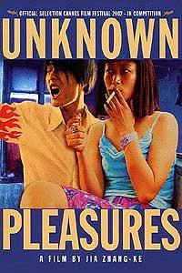 Unknown Pleasures (2002)