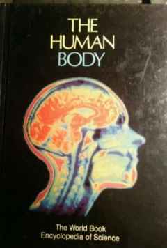 The Human Body (2001)