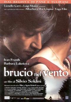 Brucio nel vento (2002)