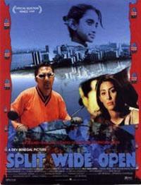 Split Wide Open (1999)
