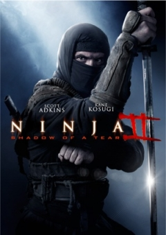 Ninja: Shadow of a Tear