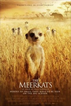 The Meerkats (2008)