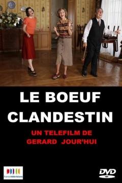 Le Boeuf clandestin (2013)