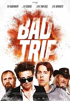 Bad Trip (2017)