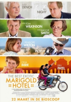 The Best Exotic Marigold Hotel (2011)