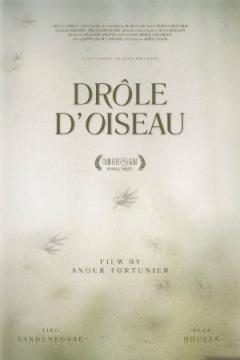 Drôle d'Oiseau (2015)