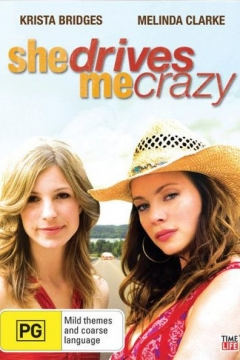 She Drives Me Crazy (2007)