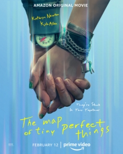 The Map of Tiny Perfect Things poster