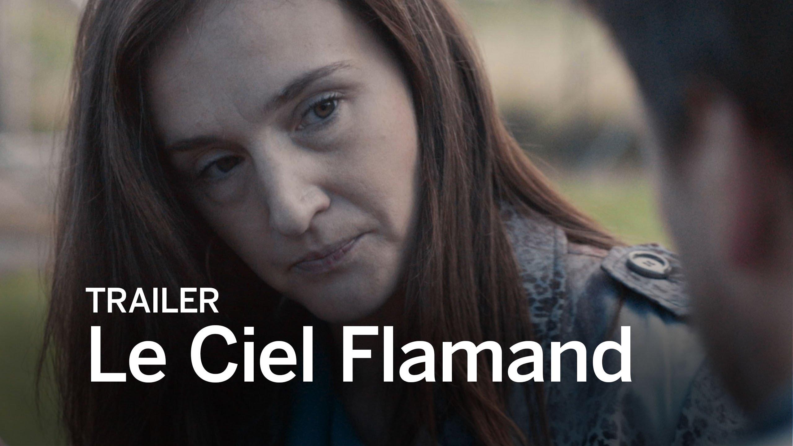 Le Ciel Flamand (2016) video/trailer