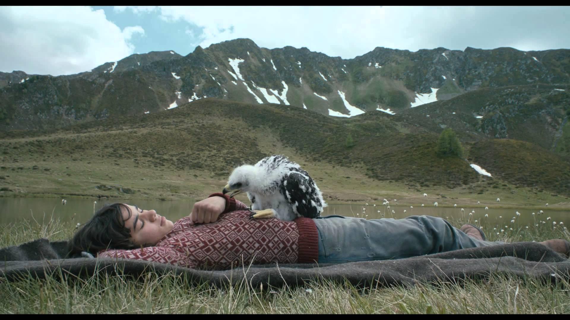 Lukas & Abel: Vleugelbroertjes (2015) video/trailer
