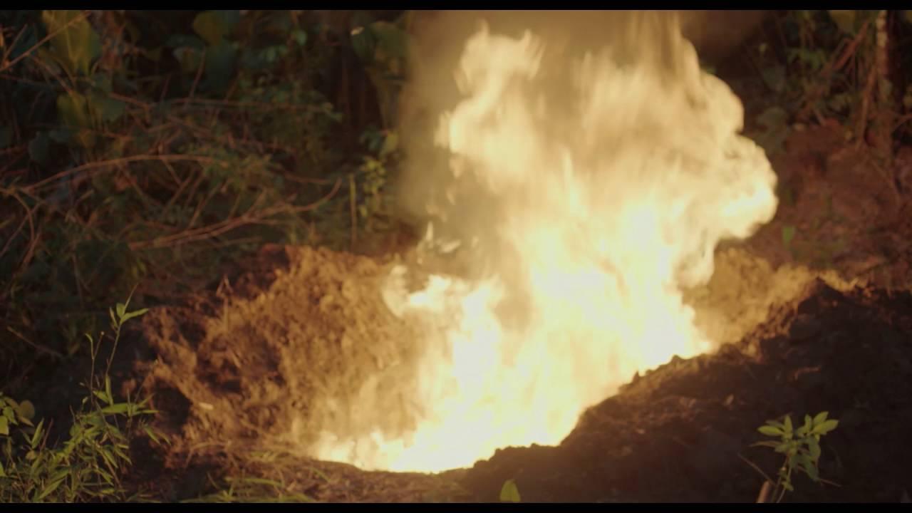 Oscuro animal (2016) video/trailer
