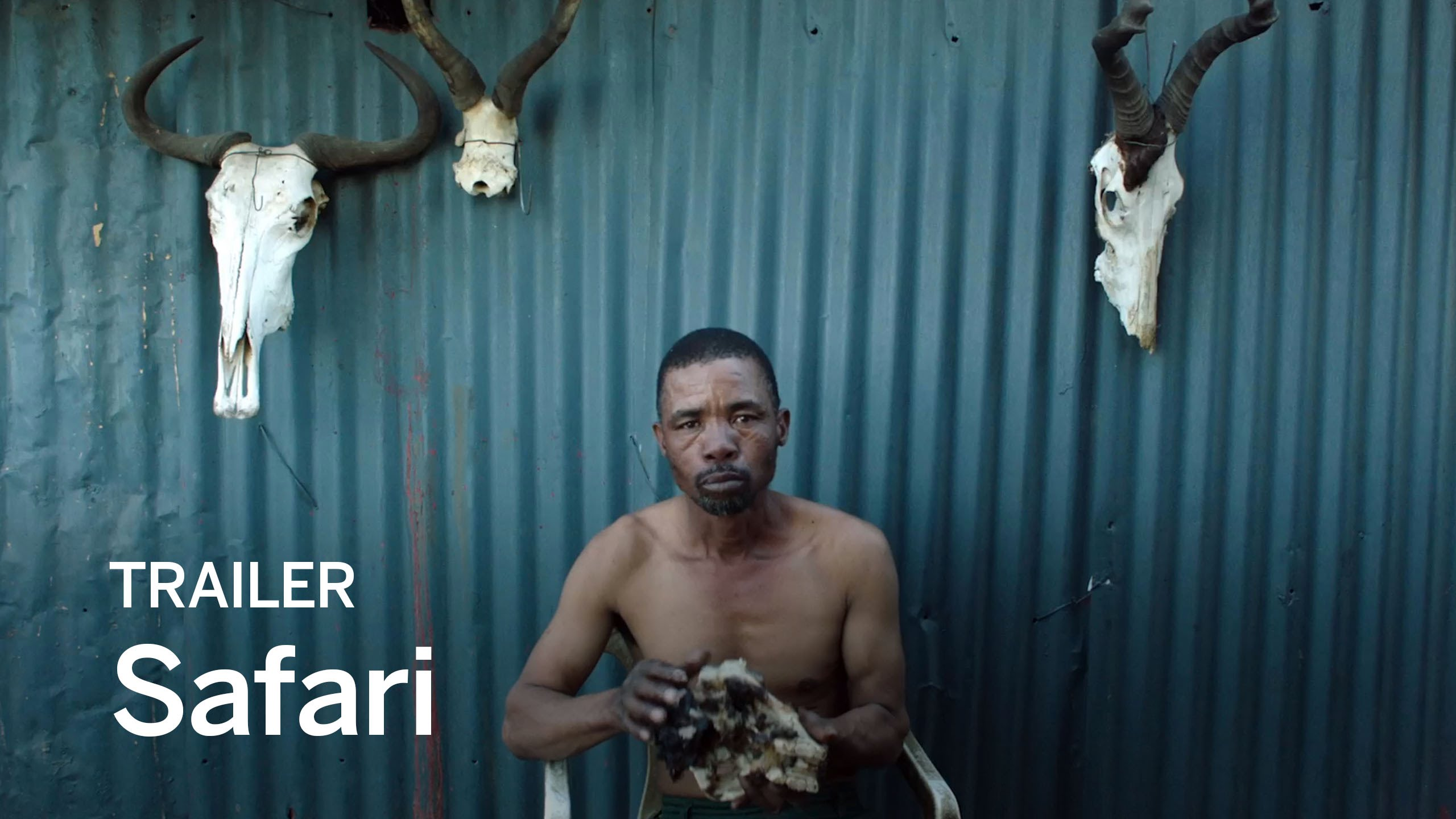 Safari (2016) video/trailer