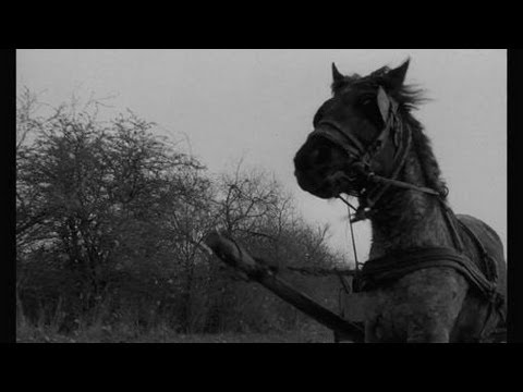 The Turin Horse (2011) video/trailer
