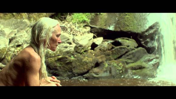 The Survivalist Trailer