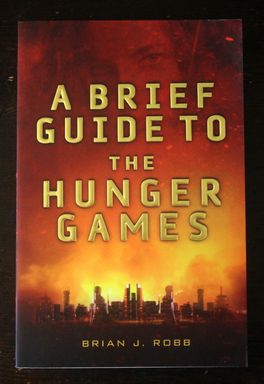 Fraai boek - A Brief Guide to the Hunger Games