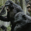 Blu-Ray Review: Dawn of the Planet of the Apes (3D)