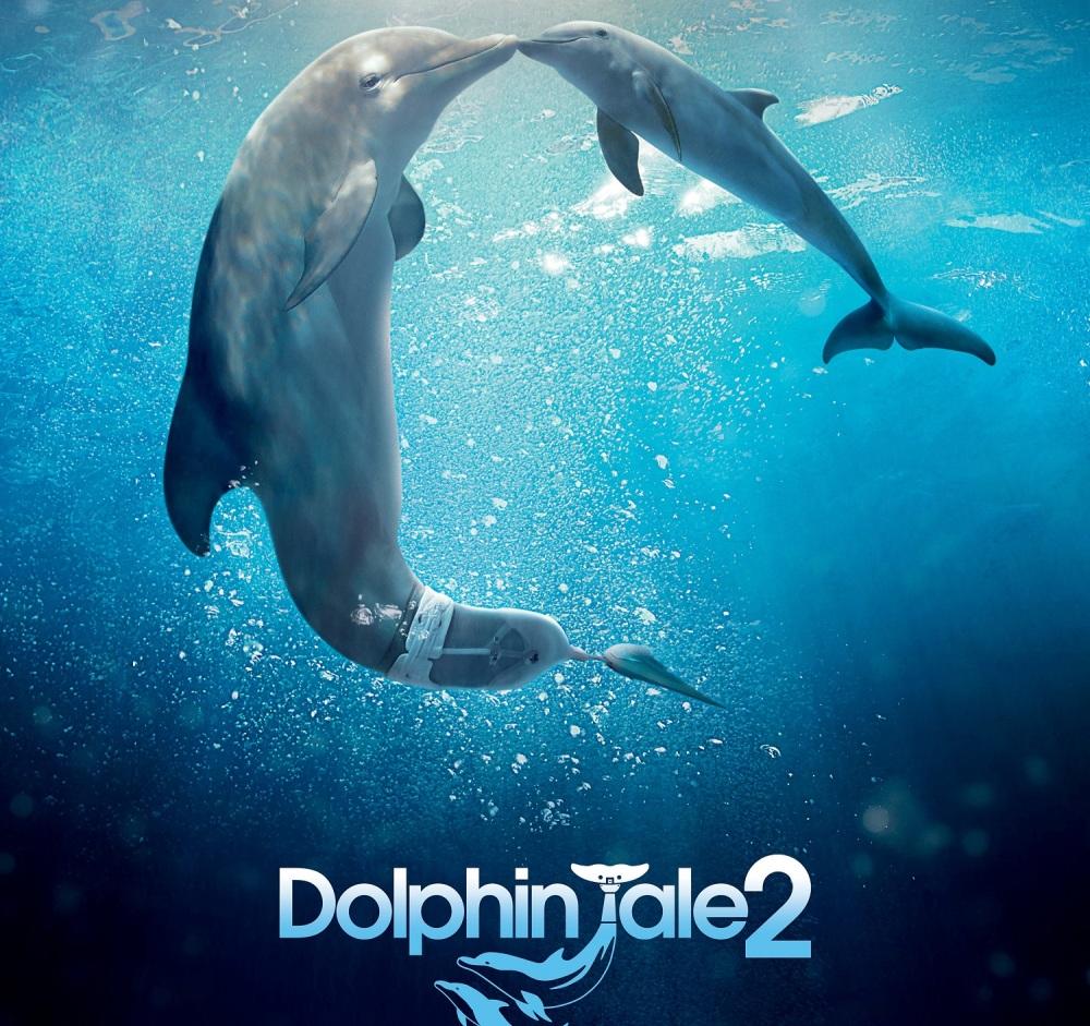 Trailer 'Dolphin Tale 2'