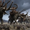 Weinstein wilde dat Quentin Tarantino  'Lord of the Rings' zou maken
