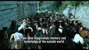 Le quattro volte (2010) video/trailer