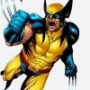 Video: échte Wolverine-klauwen!