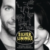 Blu-Ray Review: Silver Linings Playbook