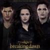 Meer 'Twilight' op komst?