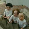 Trailer Three Stooges