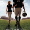 The Blind Side komt hier niet in de bioscoop