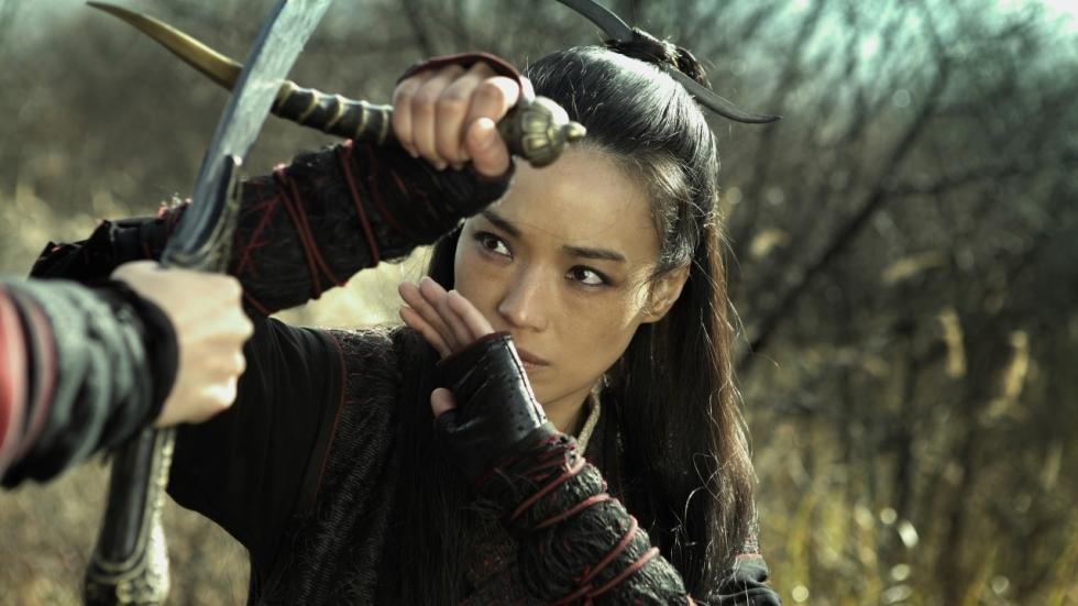 Alles over 'The Assassin'