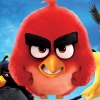 Blu-Ray Review: The Angry Birds Movie
